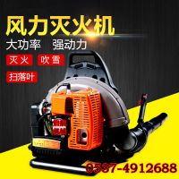 路面吹灰吹尘机 落叶清理吹风机 背负式风力灭火器吹尘机