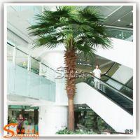 仿真蒲葵树价格 厂家定做热带仿真景观树 扇葵树