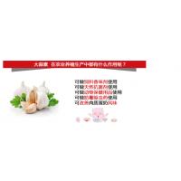 提供饲料添加剂动物诱食剂大蒜素 抗菌消炎促生长 天天香厂家直供