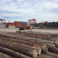 南通建筑工地木方价格
