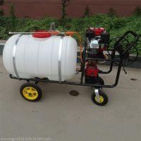 大容量高杆喷雾器厂家 远射程拉管式汽油打药机 普航果园喷雾器价格