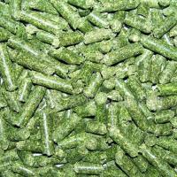 环模锯末颗粒机 利用生物质成型 青岛木屑机木糠机