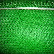 养鸡床塑料网 笼底塑料平网 海产品养殖网图片