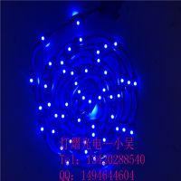 厂家直销LED双向灯 灯杆造型灯带 低压双面灯 LED灯光节图案灯