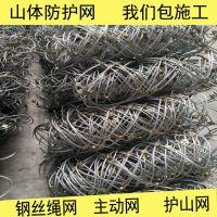 双层钢丝格栅网 四川山体边坡防护网 灾害护坡绿化网厂家