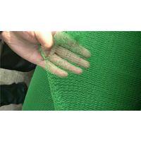 2000目绿色盖煤防尘网现货联系:15131879580