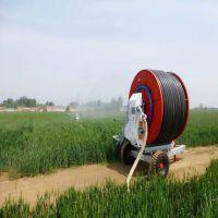 厂家直销自走移动喷灌机喷灌设备高效喷灌机享受国家补 贴质量保