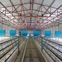 宏盛为你的鸡舍量身定制自动化养鸡设备