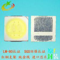 厂家批发led3030正白光灯珠 双芯1W白光光源 led品质保证