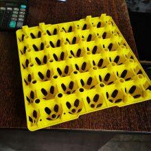 塑料蛋托 塑料鸡蛋盘 蛋托厂家 30枚鸡蛋托