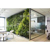 杭州墙面绿化花盆 植物墙花盆 垂直绿化产品经久耐用