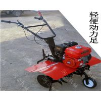 东北大豆种植整地旋耕机 培土专用旋耕机规格 生产厂家