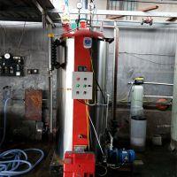 供应低压蒸馒头豆腐立式燃气锅炉节能环保快装小型燃气蒸汽锅炉