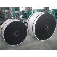 山东爬坡输送带,EP100聚酯输送带,耐灼烧聚酯输送带厂家