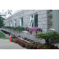 窗台阳台绿化花盆 种花种菜 储水排水经久耐用
