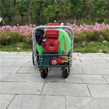 畅销推荐果园高压打药机农用水稻杀虫机大棚手推式喷雾器