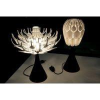 3D打印个性化定制-恒辉3D打印