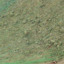 盖土网盖煤网 煤场防尘网 绿色沙场密目网