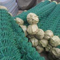 直销PVC包塑勾花网镀锌勾花网护栏球场专用编制围网可定制