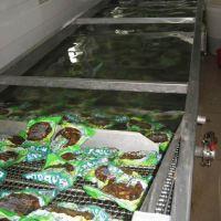 供应巴氏杀菌机 不锈钢食品杀菌流水线 康汇机械厂家生产