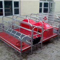 河北供应养猪设备 母猪分娩床 欧式产床 复合板产床