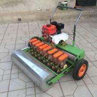 播种施肥机厂家直销 河南地区专种小颗粒种植机 佳鑫蔬菜播种机