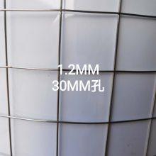 供应1/4英寸不锈钢电焊网70丝304材质库存现货