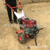 苗圃旋耕松土机 3  农用柴油小型微耕机 多功能手推式汽油耕地机