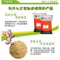 优质的乳猪颗粒料,为您的小猪带来更好的发展