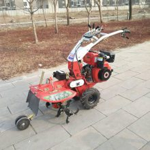农用机械柴油耕地机黄姜种植起垄机果园开沟机志成直销