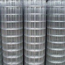 绿色塑料皮电焊网 铁丝焊接网 沈阳电焊网