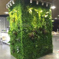 绿琴公司热销 人造多肉植物 垂直绿化墙面装饰 绢布塑料花制作五色草 仿真植物墙