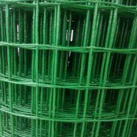 厂家直销浸塑养殖荷兰网 优质养鸡铁丝网 野外散养鸡兔网 鸡场绿色围栏网行业领先