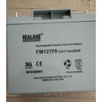 海湖SEALAKE蓄电池FM12100海湖蓄电池12V10Ah厂家价格