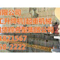 施工升降机_顶实机械(图)_山东青岛施工升降机