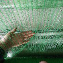 盖土防尘网的规格 盖土防尘网供应商 密目网检验