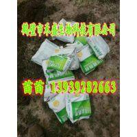 鹤壁市禾盛生物科技有限公司-HB腐熟剂 畜禽粪便腐熟剂 13939282663