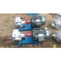天沃2.2KW 4T高浓度物料输送转子泵 三叶凸轮