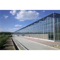 辽宁营口花卉蔬菜育苗玻璃温室大棚494类型工程承建厂家