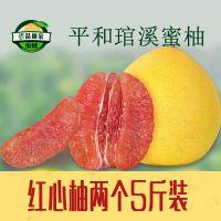 【预售】福建平和琯溪红肉蜜柚新鲜水果红心柚子批发产地直销