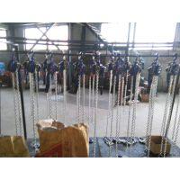 DHS电动倒链10吨20吨30吨价格