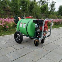 旭阳直销推车式高压机动喷药机农用稻田喷雾器汽油动力喷洒机