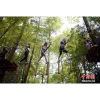 空中探险游乐设施专业厂家_定制飞越丛林厂家--名扬游乐