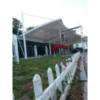 湛江学校遮阳棚,提供钢材加工拉弯,膜结构车棚安装制作