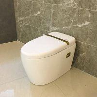 智能马桶陶瓷喷嘴自洁臀部洗净全自动感应一体式座便器