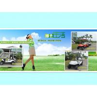 4座沙滩车电动高尔夫球车 看房车 巡逻车