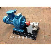 山东2CY-2.1/2.5齿轮油泵 嘉睿品牌耐磨齿轮输油泵