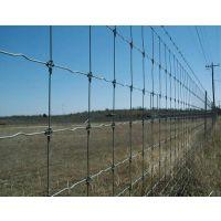 防锈牛栏网草原网 圈牛养羊铁丝网围栏 钢丝护栏网养殖网防护网