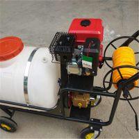 汽油喷雾机喷雾器 农田植保机械 公共场所消毒机械