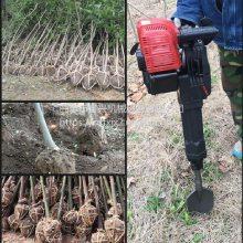 铲头起苗机型号 汽油动力弧形铲挖树机 富兴批发锯齿断根机